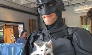 世界が絶賛!バットマンの姿でシェルターの動物を救い続ける男