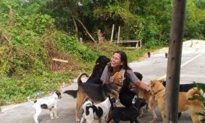 「いつもご飯をありがとう!」 毎日面倒を見てくれる女性にお返しを持ってくる野良犬に癒される